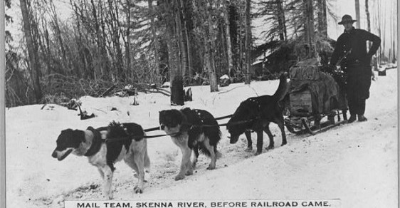 Skeena River dog mail